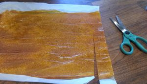 Cut fruit leather