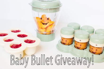 I Love My Baby Bullet! Recipes + A Giveaway!